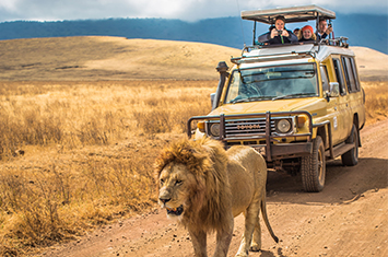 Tanzania Ngorongoro Crater accessible travel safari