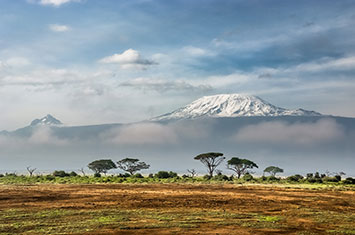 Mount Kilimanjaro Accessible Safari